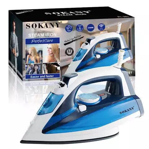 Home Electric Steam Iron